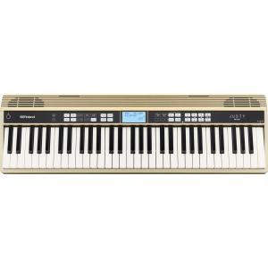 Roland JUSTY HK-100 吹奏楽、合唱の基礎練習に ハーモニー&リズム練習用キーボード|aion