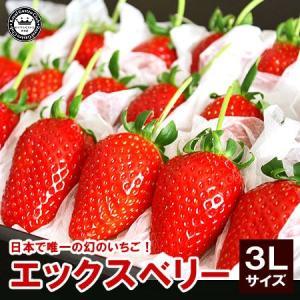 X エックス ベリー いちご 苺 福島県産 3Lサイズ 18粒詰め|aionline-japan