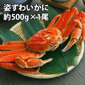 姿ズワイガニ 約500g ズワイガニ 姿がに 送料無料 | 贈り物 贈答 カニ 蟹 残暑見舞い ギフト|aionline-japan
