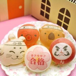 合格祝い お絵かきマカロン 動物っこ 招き猫 だるま 桜 コアラ タコ 計5個入り 合格祈願 応援 プレゼント お菓子 スイーツ|aionline-japan