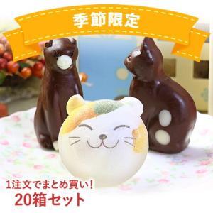 お菓子 お絵かきマカロン & ねこ チョコレート 計3個 お家の箱入り 20箱 セット | かわいい スイーツ おかし|aionline-japan