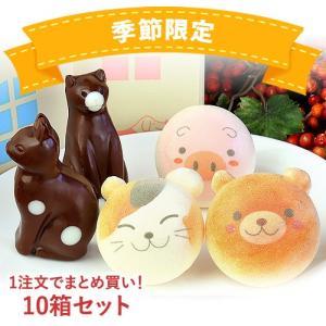 お菓子 まとめ買い お絵かきマカロン & ねこ チョコレート 計5個 詰め合わせ お家の箱入り 10箱 セット | かわいい お返し 2019|aionline-japan