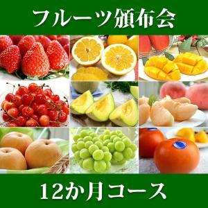 12ヵ月 1年 コース フルーツ頒布会 果物はんぷかい 毎月旬の果物をお届けの通販なら日本ロイヤルガストロ倶楽部|aionline-japan