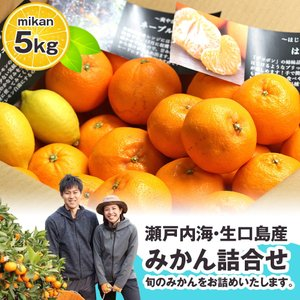 大地さんの蜜柑 みかん 詰め合わせ 5kg 広島県産 送料無料 せとか はるか ネーブル オレンジ 清見 八朔 サンフルーツ レモン など|aionline-japan