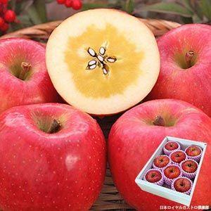 お歳暮 ギフト フルーツ 幻の蜜入り 林檎 りんご 高徳 こうとく 約2kg 6〜9玉入り 秀品 山形県産|aionline-japan