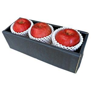 お歳暮 ギフト フルーツ サンふじ りんご 山形県産 秀品 特大サイズ 3玉 化粧箱入り 送料無料 | 林檎 詰め合わせ くだもの 御歳暮 贈答 贈り物|aionline-japan
