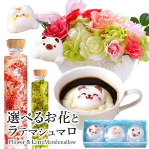 ハーバリウム & Latte マシュマロ ラテマル 3個入り 送料無料 | 花 スイーツ セット プレゼント お菓子 かわいい 猫 ねこ 動物|aionline-japan