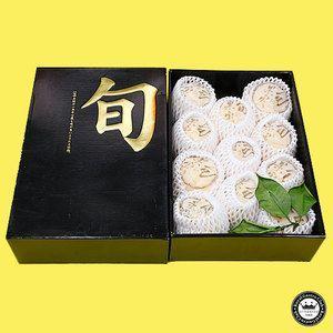 特選晩柑 愛媛県産みかん 特選L寸以上 11玉入り 河内晩柑 かわちばんかん 化粧箱入り 送料無料|aionline-japan