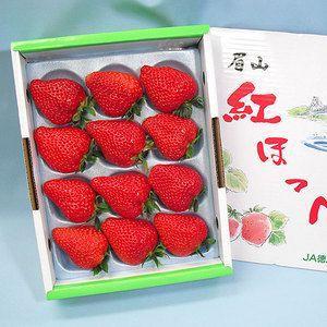 紅ほっぺ いちご 苺 徳島県産 約450g 化粧箱入り 送料無料|aionline-japan