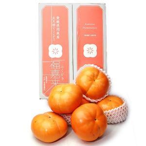 太天柿 たいてんがき 愛媛県産 約3kg 6〜9玉入り くだもの カキ aionline-japan