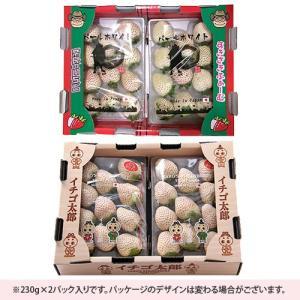 白い苺 いちご パールホワイト 奈良県産 230g 2パック詰め 送料無料|aionline-japan|04