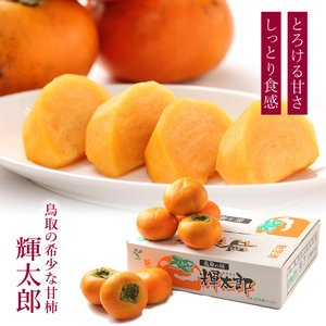 輝太郎 きたろう 柿 鳥取県産 約3kg くだもの カキ|aionline-japan