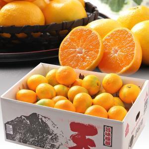お歳暮 ギフト フルーツ 紀南みかん 天 てん 約5kg S〜Mサイズ 和歌山県産 送料無料|aionline-japan