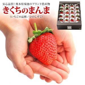 きくちのまんま いちご ひのしずく 21〜35粒 詰め合わせ 熊本県産 個包装 フルーツ ギフト 送料無料|aionline-japan
