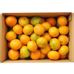 ゆらっ子 ゆら早生 みかん 約5kg 和歌山産 極早生 蜜柑 詰め合わせ|aionline-japan
