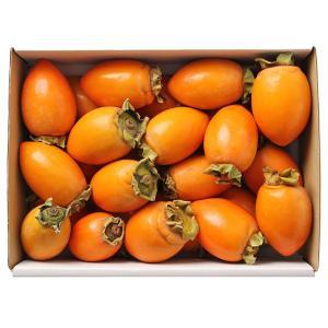 筆柿 ふで柿 甘柿 愛知県産 約2.5kg L〜2Lサイズ 詰め合わせ 箱入り|aionline-japan