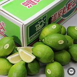 国産レモン 約5kg 高知県産 温室ハウス栽培 送料無料|aionline-japan