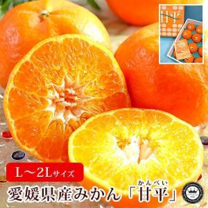甘平 かんぺい 愛媛県産みかん 蜜柑 L〜2Lサイズ 約3kg 12〜15玉 送料無料
