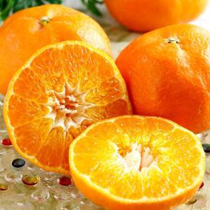 甘平 かんぺい 愛媛県産みかん 蜜柑 3L〜4Lサイズ 約3kg 8〜10玉 送料無料