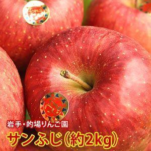 お歳暮 ギフト フルーツ りんご 詰め合わせ サンふじ 約2kg 5〜6玉入り 岩手県産 生産者限定 くだもの 御歳暮 贈答 贈り物|aionline-japan