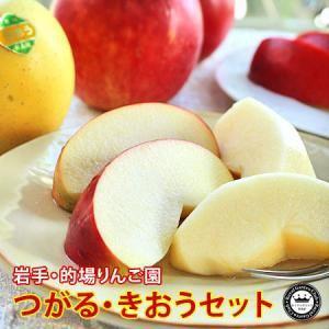 りんご 詰め合わせ つがる きおう 食べ比べ セット 約2kg 5〜6玉入り 岩手県産 送料無料 生産者限定 フルーツ ギフト くだもの 果物 林檎|aionline-japan