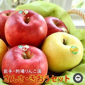 りんご 詰め合わせ さんさ きおう 食べ比べ セット 約2kg 5〜6玉入り 岩手県産 送料無料 生産者限定 フルーツ ギフト くだもの 果物 林檎|aionline-japan
