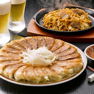 B級グルメ対決 富士宮やきそば 3食 &浜松餃子 45個 セット 静岡県産|aionline-japan
