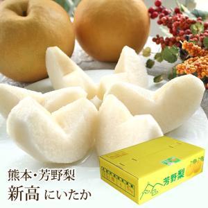 新高 梨 にいたか なし 熊本県産 芳野梨 約5kg 7〜9玉入り|aionline-japan