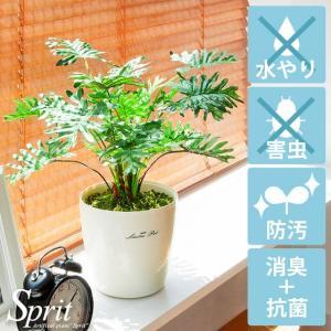 観葉植物 光触媒 スプリット 人工観葉植物 フェイクグリーン インテリア おしゃれ 消臭 防菌 お手入れ不要 テーブルタイプ 光触媒人工植物|air-r