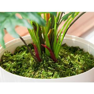 観葉植物 光触媒 スプリット 人工観葉植物 フェイクグリーン インテリア おしゃれ 消臭 防菌 お手入れ不要 テーブルタイプ 光触媒人工植物|air-r|06