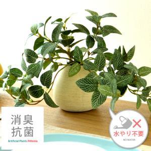 観葉植物 光触媒 フィットニア 卓上 インテリア 人工観葉植物 造花 フェイクグリーン おしゃれ かわいい 人気 お手入れ不要|air-r