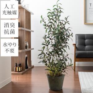 観葉植物 フェイクグリーン 人工観葉植物 光触媒観葉植物 オリーブ オリーブの木 106cm 光触媒...