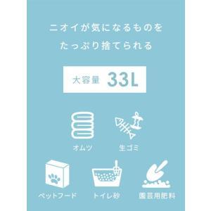 ゴミ箱 おしゃれ キッチン 分別 33リットル 33L ごみ箱 ロック付き フタ付き 大容量 ダストボックス 角型 シンプル リビング におい漏れ対策 送料無料|air-r|02