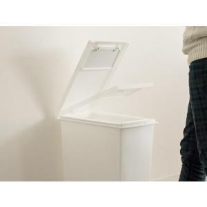 ゴミ箱 おしゃれ キッチン 45リットル 分別 45L ごみ箱 ダストボックス ペダル スリム フタ付き 大容量 大型 角型 シンプル 蓋付きゴミ箱|air-r|04