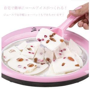 アイスクリームメーカー ロールアイスメーカー 手作りアイス シャーベット ひんやりデザート