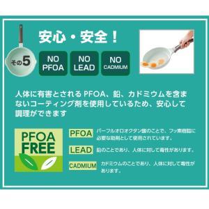 〔送料無料〕アピデ 26cmフライパン ヒスイコーティングキッチンツール  ヒスイ セラミック 軽量 熱伝導 遠赤外線 汚れに強い |airleaf|05