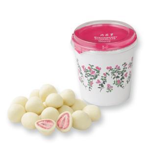 バレンタイン ストロベリーチョコ ホワイト 六花亭 チョコレート スイーツ ギフト|airportshop-bluesky