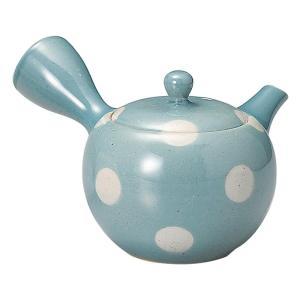 ステンレス製の細かいメッシュの茶漉しが付いた、深蒸し茶を淹れるのに適した急須です。