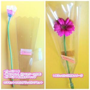 【卒業式・結婚式・イベントなどのプチギフトに】ガーベラの花1...