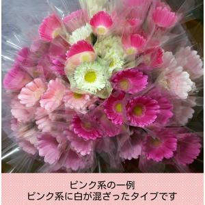 母の日ギフト ガーベラ花束70本(長さ45cm以上)産地直送 【古稀祝い・母の日・誕生日・記念日のプレゼントに】|airutoririka