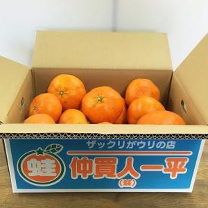 甘平(規格外)2019.10.25TSUTAYA  O-CRESTチケットセット 2月上旬から[順次発送]|aisato