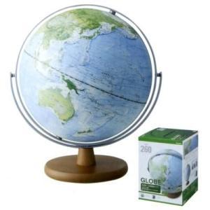 レイメイ 地球儀 土地被覆タイプ 全回転 OYV260|aisol33