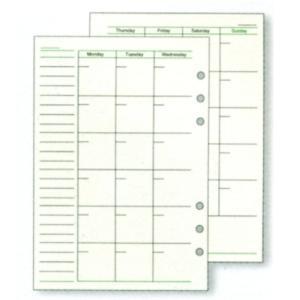 レイメイ ダ・ヴィンチ システム手帳 リフィル A5サイズ フリーマンスリースケジュールA DAR293|aisol33