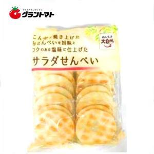 おいしさ大自然 サラダせんべい 20枚箱売り12袋入 アジカル【同梱不可】|aizu-crops