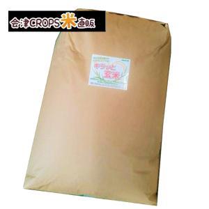 ミルキークイーン お米 キラッと玄米30kg 福島県産 令和元年 送料無料