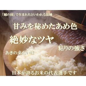 コシヒカリ お米 30kg (10kg×3袋) 精白米 福島県産 29年産 送料無料|aizu-crops|02