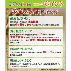 コシヒカリ お米 30kg (10kg×3袋) 精白米 福島県産 29年産 送料無料|aizu-crops|03