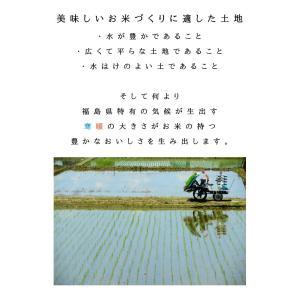 【クーポン券で10%OFF 】 コシヒカリ 10kg(5kg×2) お米 白米 平成30年 福島県産 あすつく 送料無料|aizu-crops|04