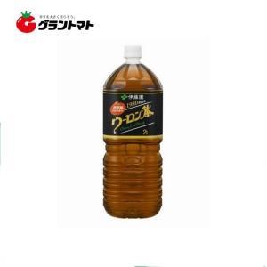 【2ケース】伊藤園 ウーロン茶 PET (2L×12本)【同梱不可】【送料無料】|aizu-crops
