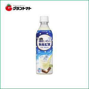 【1ケース】アサヒ飲料 濃いめのカルピス(490ml×24本)【同梱不可】【送料無料】|aizu-crops